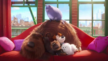 McDonald's Happy Meal TV Spot, 'The Secret Life of Pets: Where Do They Go?' - 1660 commercial airings