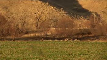 NAPA Auto Parts TV Spot, 'Deer Horn' Featuring Jackie Bushman - Thumbnail 6