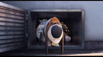 The Secret Life of Pets - Alternate Trailer 45