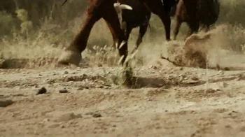 YETI Rambler Bottles TV Spot, 'Wild Cow Catcher' - Thumbnail 5