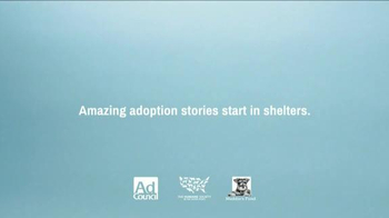 The Shelter Pet Project TV Spot, 'Hamilton Pug' - Thumbnail 9