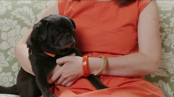 The Shelter Pet Project TV Spot, 'Hamilton Pug' - Thumbnail 2