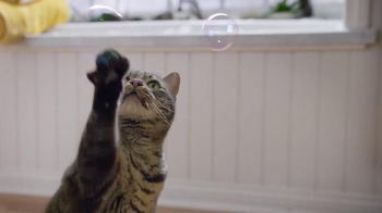 Purina Tidy Cats LightWeight 4-in-1 TV Spot, 'Bubbles' - Thumbnail 4