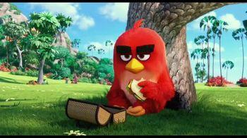 The Angry Birds Movie - Alternate Trailer 3