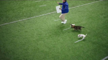 Pedigree Puppy TV Spot, 'Puppy Bowl Tryouts No. 2: Speed' - Thumbnail 3