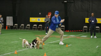 Pedigree Puppy TV Spot, 'Puppy Bowl Tryouts No. 2: Speed' - Thumbnail 9