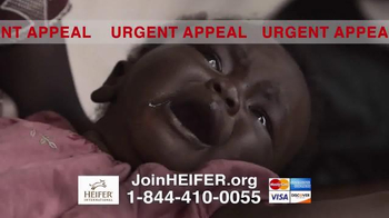 Heifer International TV Spot, 'Urgent Appeal' - Thumbnail 3
