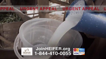 Heifer International TV Spot, 'Urgent Appeal' - Thumbnail 4