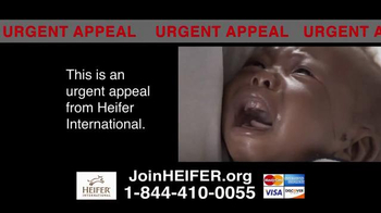 Heifer International TV Spot, 'Urgent Appeal' - Thumbnail 7