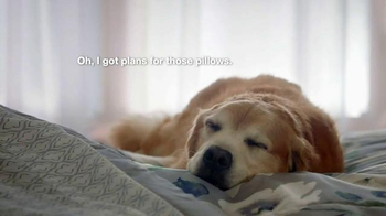 Kmart Home Sale TV Spot, 'Sleep Like a Dog' - Thumbnail 6