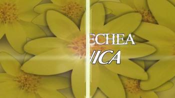 Goicoechea Árnica TV Spot, 'Zonas con várices' [Spanish] - Thumbnail 3