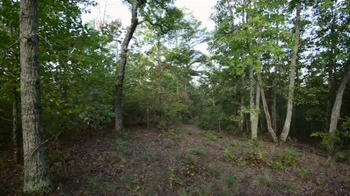 Whitetail Properties TV Spot, 'Alabama Deer and Turkey Hunting Farm' - Thumbnail 2
