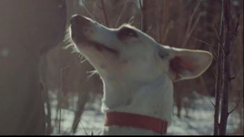 Purina Pro Plan Veterinary Diets FortiFlora TV Spot, 'Arleigh Reynolds' - Thumbnail 2