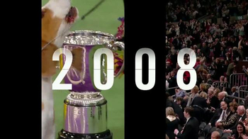 Purina Pro Plan TV Spot, 'Westminster Kennel Club Dog Show: Nine Years' - Thumbnail 3