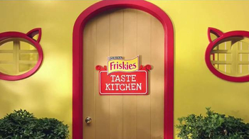 Friskies Cat Concoctions TV Spot, 'Flavor' - Thumbnail 1