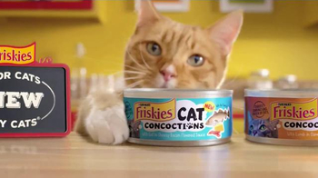 Friskies Cat Concoctions TV Spot, 'Flavor' - Thumbnail 10