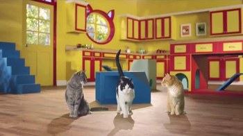 Friskies Cat Concoctions TV Spot, 'Flavor' - Thumbnail 2