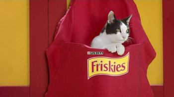 Friskies Cat Concoctions TV Spot, 'Flavor' - Thumbnail 4