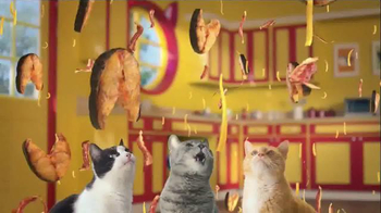 Friskies Cat Concoctions TV Spot, 'Flavor'