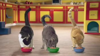 Friskies Cat Concoctions TV Spot, 'Flavor' - Thumbnail 7