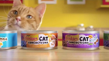Friskies Cat Concoctions TV Spot, 'Flavor' - Thumbnail 9