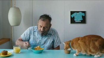 The Shelter Pet Project TV Spot, 'Keyboard Cat'