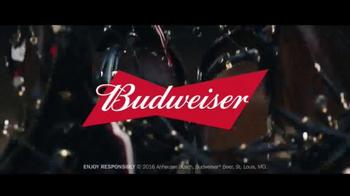 Budweiser 2016 Super Bowl TV Spot, 'Nunca sacrificando sabor' [Spanish] - Thumbnail 8