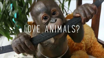 The Dodo TV Spot, 'Love Them Here' - 182 commercial airings