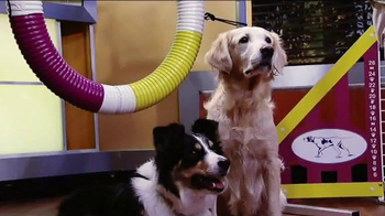 Cosequin TV Spot, 'Westminster Agility Competition' Featuring Jack Hanna - Thumbnail 4