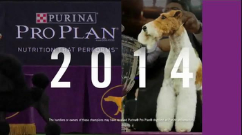 Purina Pro Plan TV Spot, 'CJ: 10 Years' - Thumbnail 4