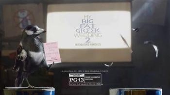 Windex TV Spot, 'My Big Fat Greek Wedding 2' - Thumbnail 9