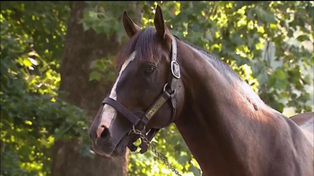 Claiborne Farm TV Spot, 'War Front: 2016'