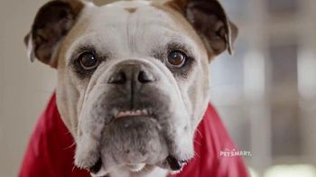 PetSmart Tailgating Event TV Spot, 'Rivals' Song by Queen - 209 commercial airings