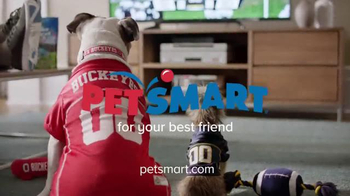 PetSmart Tailgating Event TV Spot, 'Rivals' Song by Queen - Thumbnail 8