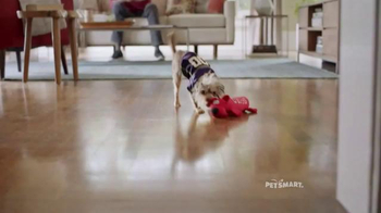 PetSmart Tailgating Event TV Spot, 'Rivals' Song by Queen - Thumbnail 3