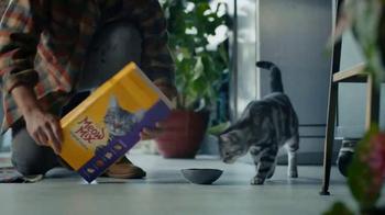 Meow Mix TV Spot, 'Cymbals' - Thumbnail 6