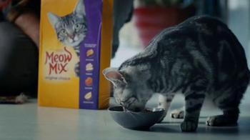 Meow Mix TV Spot, 'Cymbals' - Thumbnail 7