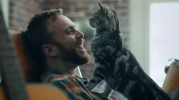 Meow Mix TV Spot, 'Cymbals' - Thumbnail 8