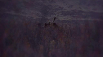 Cabela's TV Spot, 'The Hunt Never Ends' Featuring Eva Shockey - Thumbnail 6