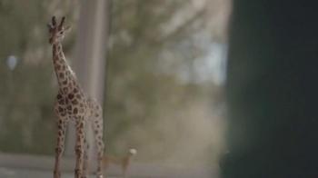 Expedia+ Rewards TV Spot, 'Safari' [Spanish] - Thumbnail 8