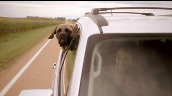 Cox Communications High Speed Internet TV Spot, 'Dog Reliability' - Thumbnail 2