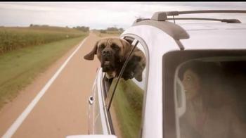 Cox Communications High Speed Internet TV Spot, 'Dog Reliability' - Thumbnail 3