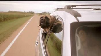Cox Communications High Speed Internet TV Spot, 'Dog Reliability' - Thumbnail 4