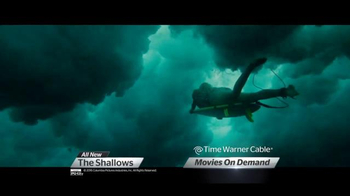 The Purge and The Shallows thumbnail