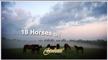 Claiborne Farm TV Spot, 'A Century of Success' - Thumbnail 8