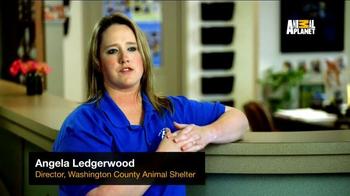Subaru TV Spot, 'Animal Planet: Community Support' - Thumbnail 1