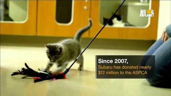 Subaru TV Spot, 'Animal Planet: Community Support' - Thumbnail 4