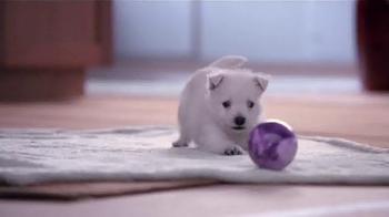 Banfield Pet Hospital TV Spot, 'Molly: Free Exam' - Thumbnail 1