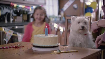 Banfield Pet Hospital TV Spot, 'Molly: Free Exam' - 242 commercial airings