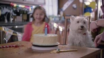 Banfield Pet Hospital TV Spot, 'Molly: Free Exam'